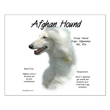 Afghan (white) Small Poster