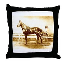 Dan Patch Throw Pillow