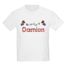 Damion, Christmas T-Shirt