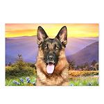 Shepherd Meadow Postcards (Package of 8)