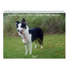 Unique Border collie Wall Calendar