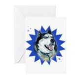 Starburst Boy Greeting Cards (Pk of 10)