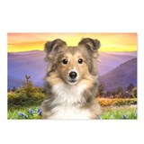 Sheltie Meadow Postcards (Package of 8)