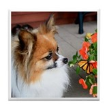 Papillon & Butterfly Tile Coaster