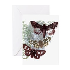 Skull Art Moth Greeting Cards (Pk of 10)
