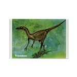 Troodon Dinosaur Rectangle Magnet (10 pack)