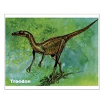 Troodon Dinosaur Small Poster