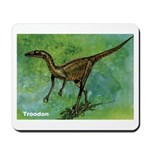Troodon Dinosaur Mousepad