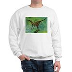 Troodon Dinosaur (Front) Sweatshirt
