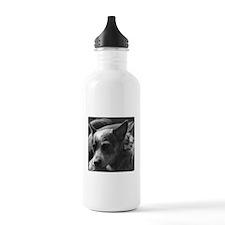 Cute Heeler Water Bottle