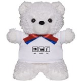 RC Airplane Teddy Bear