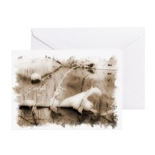 Snowy Creek Greeting Cards (Pk of 10)