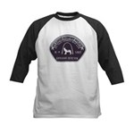 St. Louis Airport K9 Kids Baseball Jersey