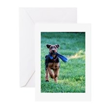 Cool Images of puppies Greeting Cards (Pk of 10)