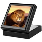 Funny African animals Keepsake Box