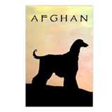 afghan hound orange sunset Postcards (Package of 8