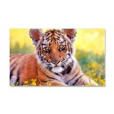 Tiger Baby Cub Car Magnet 20 x 12
