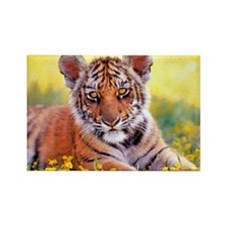 Tiger Baby Cub Rectangle Magnet