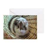 Cute Cavies Greeting Cards (Pk of 10)