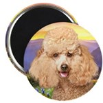 Poodle Meadow Magnet