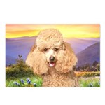 Poodle Meadow Postcards (Package of 8)