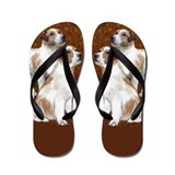 jack russell Flip Flops