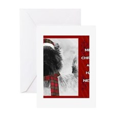 Cairn Christmas Card with hat  scarf Greeting Card