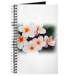 plumeria.jpg Journal