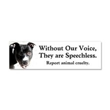 """Without Our Voice"" Car Magnet"