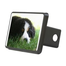 Bernese Puppy Hitch Cover