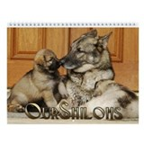 2013 OurShilohs Wall Calendar