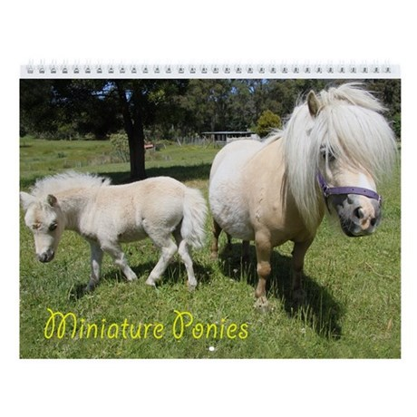 Miniature Pony Wall Calendar