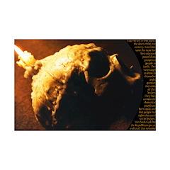 Bush's New Dark Ages Poster (11x17)