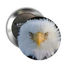 "Eagle 2.25"" Button"