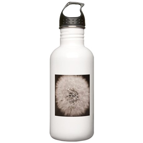 Make a wish. Stainless Water Bottle 1.0L