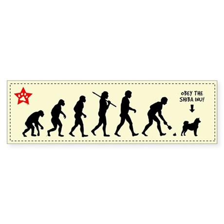 SHIBA INU Evolution - Bumper Sticker