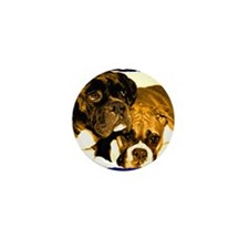 Boxer Dog Friends Mini Button