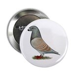 """American Show Racer Opal Pigeon 2.25"""" Button"""
