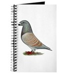 American Show Racer Opal Pigeon Journal