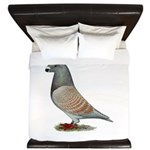 American Show Racer Opal Pigeon King Duvet