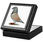American Show Racer Opal Pigeon Keepsake Box