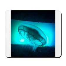 Blue jellyfish mousepad
