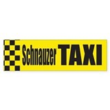Schnauzer Taxi Bumper Car Sticker