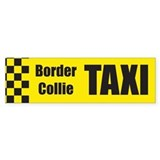 Border Collie Taxi Bumper Car Sticker