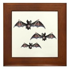 Bats Framed Tile