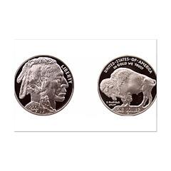"7"" hi image Silver Indian-Buffalo MiniPoster Print"