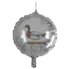Mallard Duck Drake Balloon