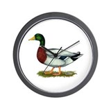Mallard Duck Drake Wall Clock