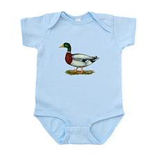 Mallard Duck Drake Infant Bodysuit
