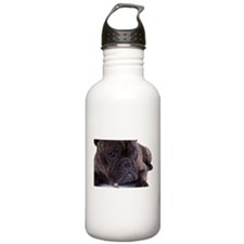 French bulldog - totally contented Water Bottle